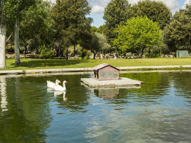 Lago en el Cementerio Jardín de Alcalá de Henares